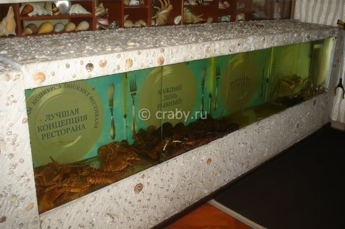 Aquarium showcase in restaurant Buyabes