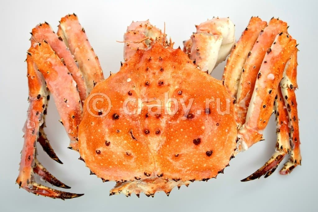 King Crab Cooked Cooked Frozen Blue King Crab